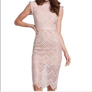 NWT Bardot Imogen body con lace dress blush sz S